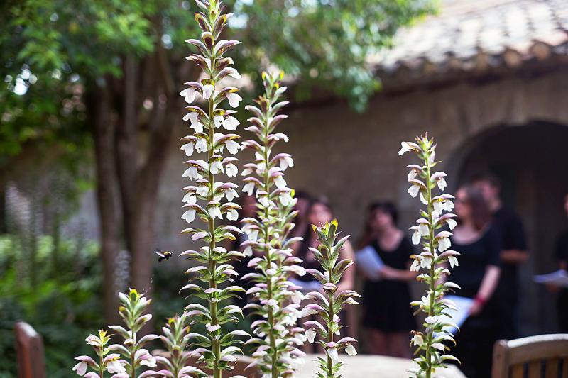 Jardins © Alex Nollet/La Chartreuse