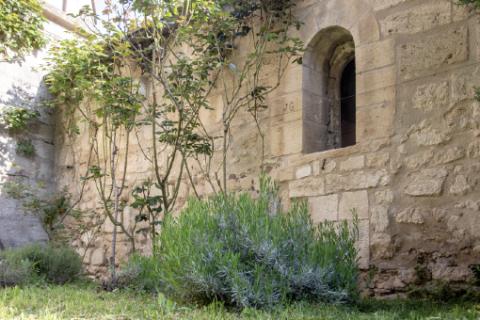 Jardin du sous-sacristain © Alex Nollet